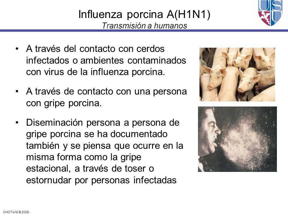 Influenza porcina A(H1N1) Transmisión a humanos