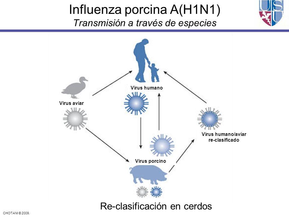 Influenza porcina A(H1N1) Transmisión a través de especies