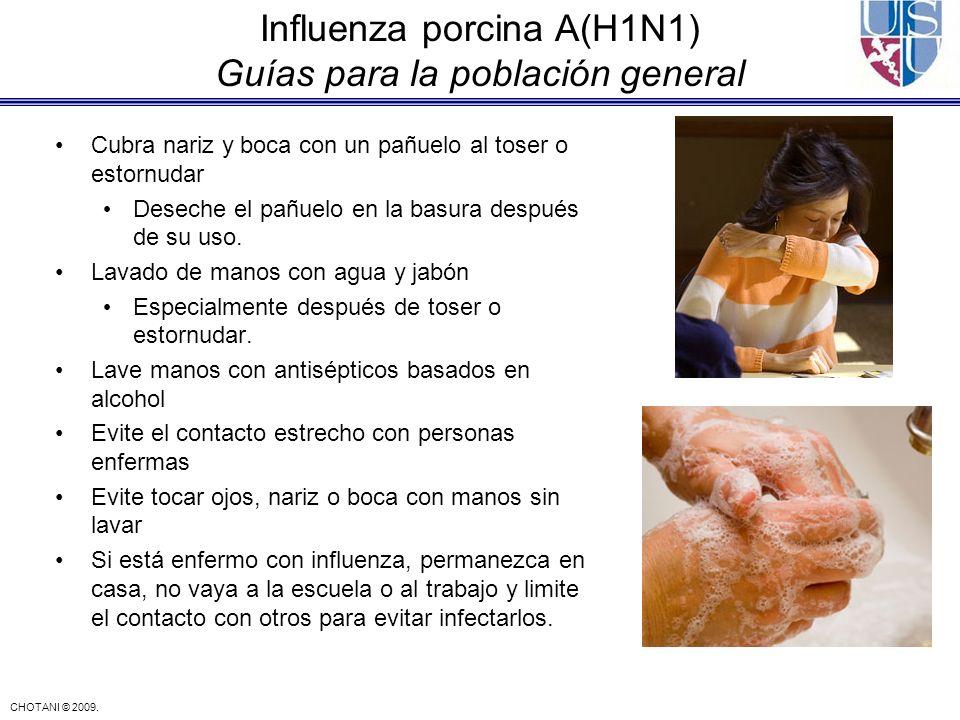 Influenza porcina A(H1N1) Guías para la población general