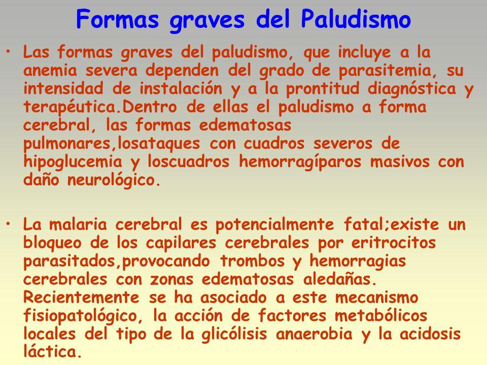 Formas graves del Paludismo