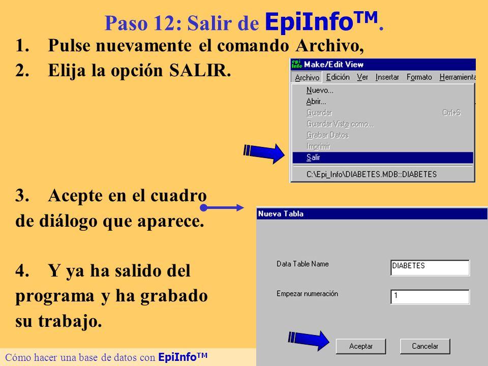 Paso 12: Salir de EpiInfoTM.
