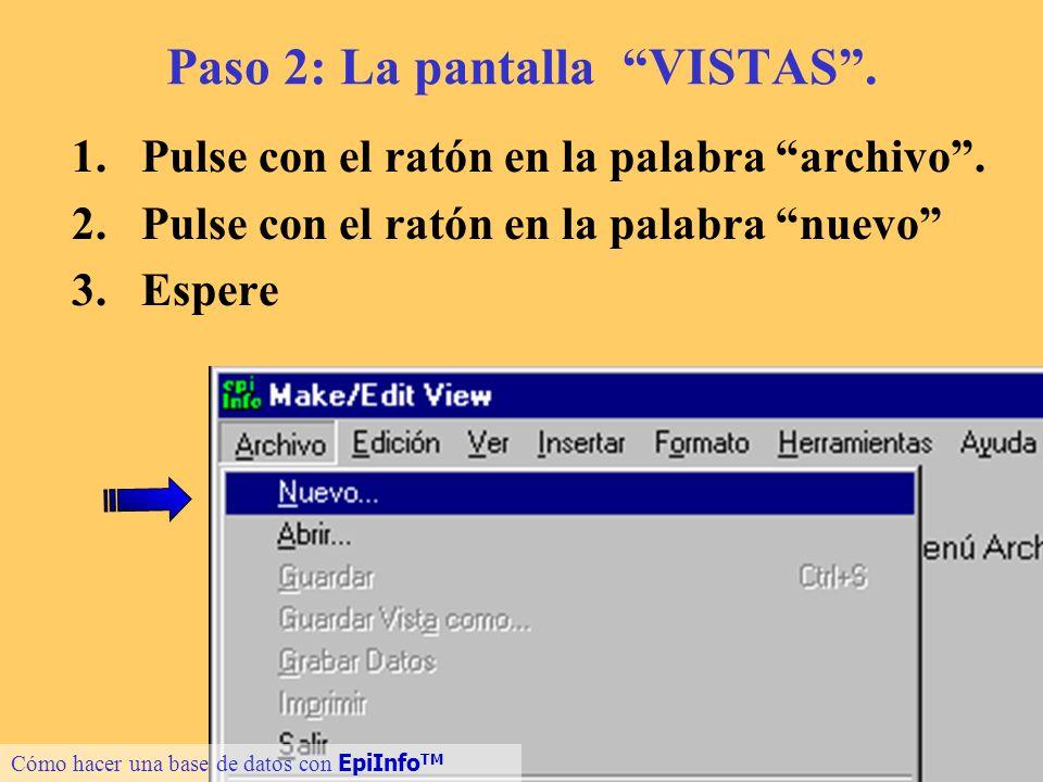 Paso 2: La pantalla VISTAS .