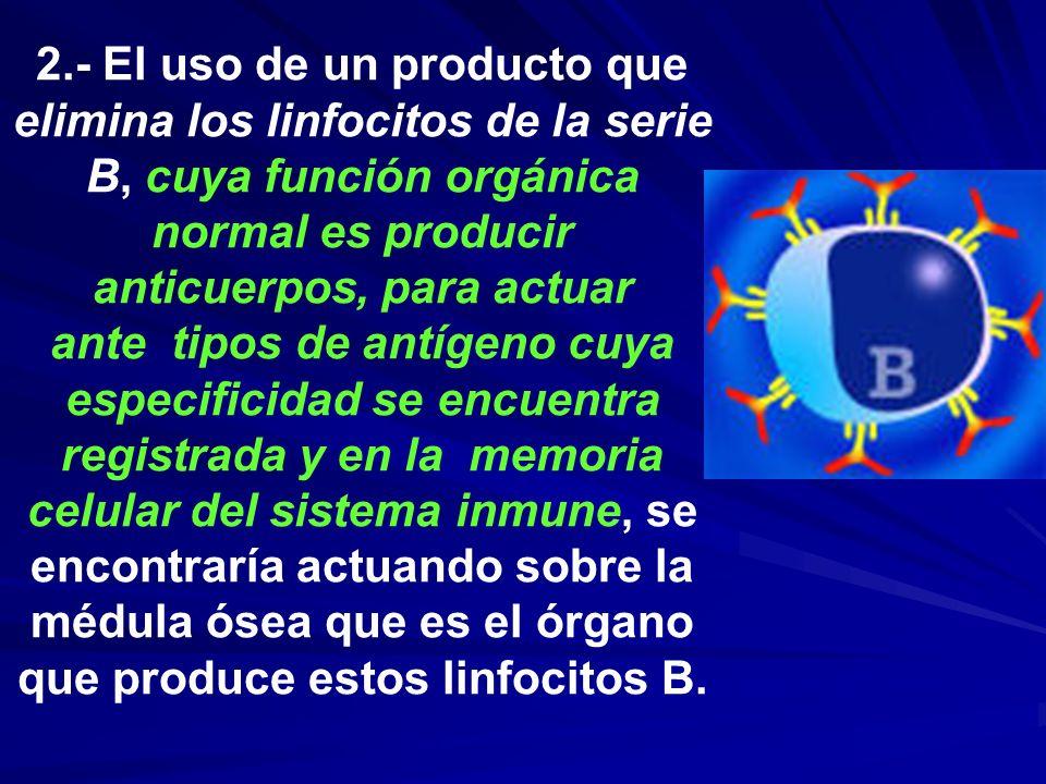 2.- El uso de un producto que elimina los linfocitos de la serie B, cuya función orgánica normal es producir anticuerpos, para actuar ante tipos de antígeno cuya especificidad se encuentra registrada y en la memoria celular del sistema inmune, se encontraría actuando sobre la médula ósea que es el órgano que produce estos linfocitos B.
