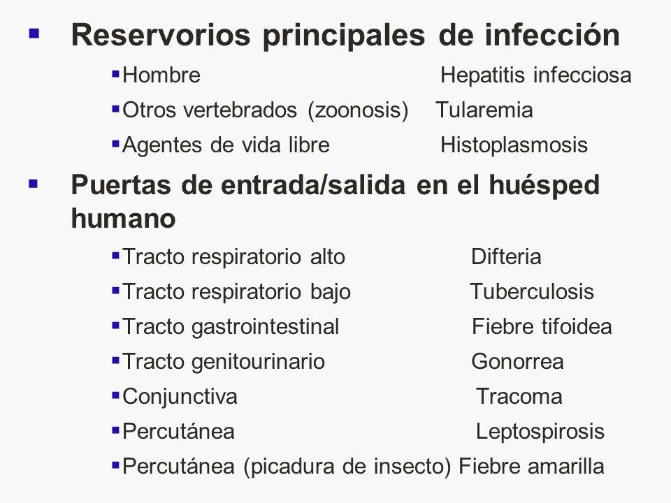 Reservorios principales de infección