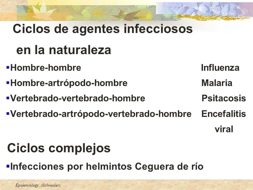 en la naturaleza Ciclos de agentes infecciosos Ciclos complejos