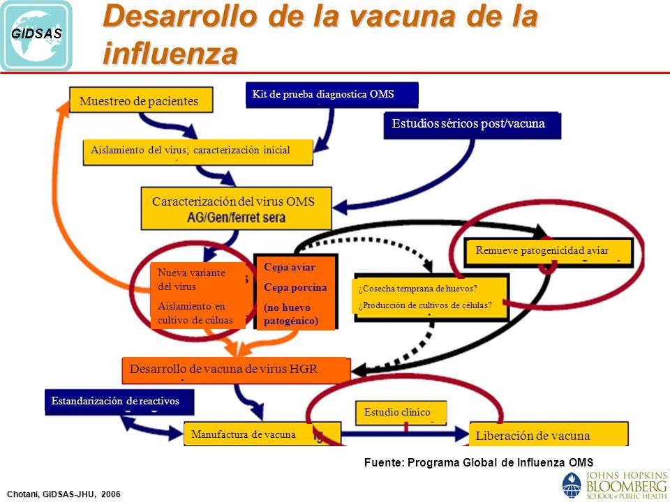 Desarrollo de la vacuna de la influenza