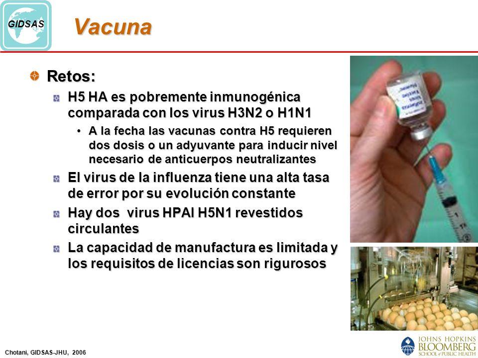 Vacuna Retos: H5 HA es pobremente inmunogénica comparada con los virus H3N2 o H1N1.