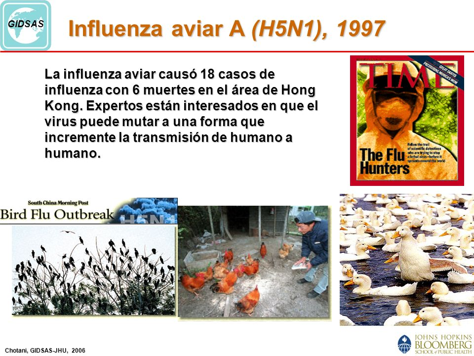 Influenza aviar A (H5N1), 1997