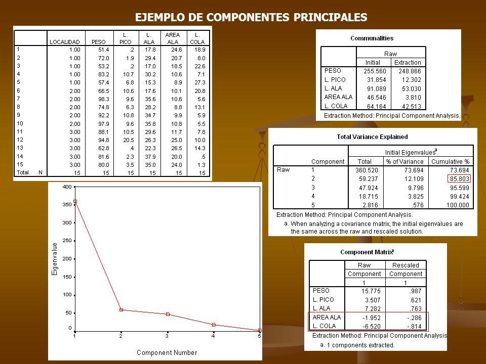 EJEMPLO DE COMPONENTES PRINCIPALES