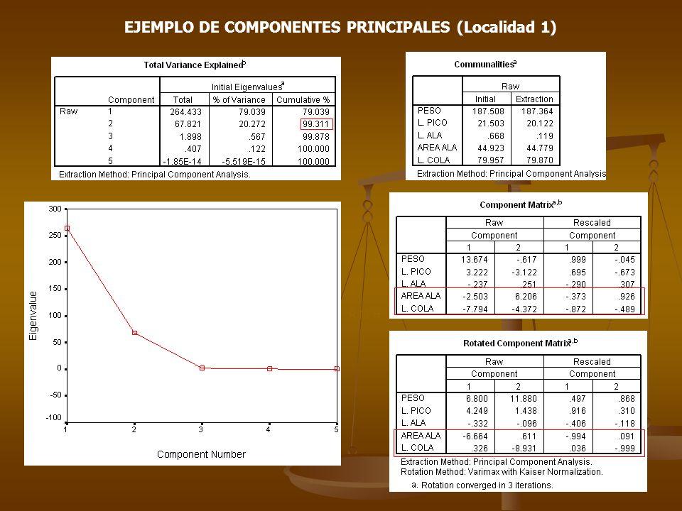 EJEMPLO DE COMPONENTES PRINCIPALES (Localidad 1)