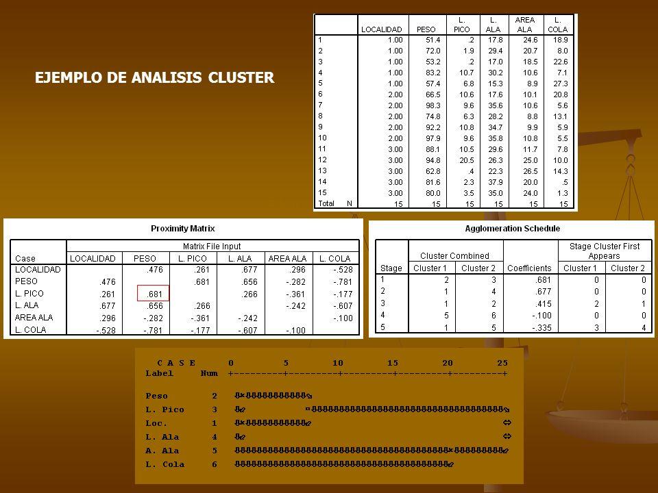 EJEMPLO DE ANALISIS CLUSTER