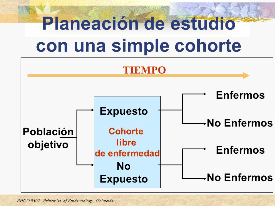 Planeación de estudio con una simple cohorte
