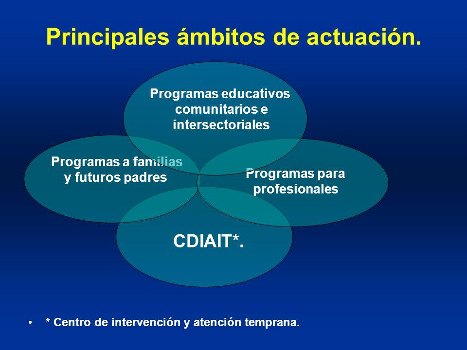 Principales ámbitos de actuación.