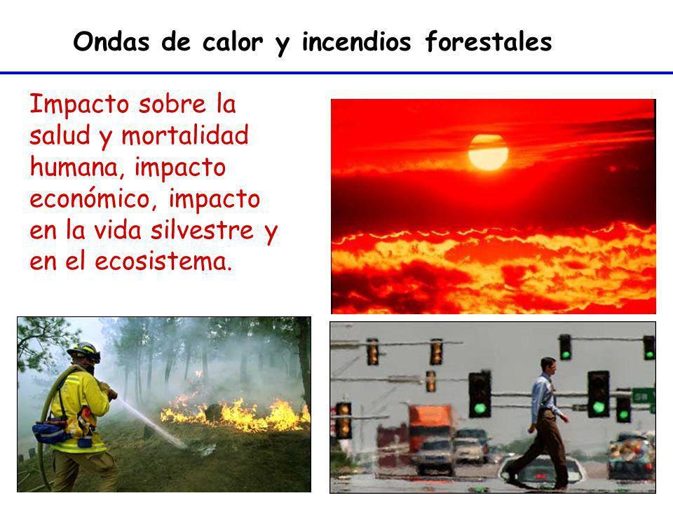 Ondas de calor y incendios forestales