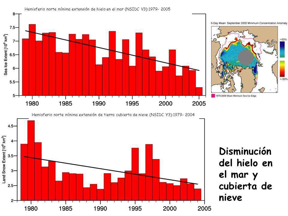 Disminución del hielo en el mar y cubierta de nieve