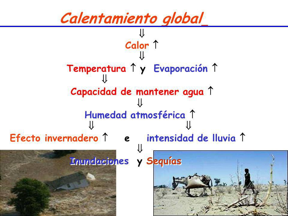 Calentamiento global  Calor  Temperatura  y Evaporación 