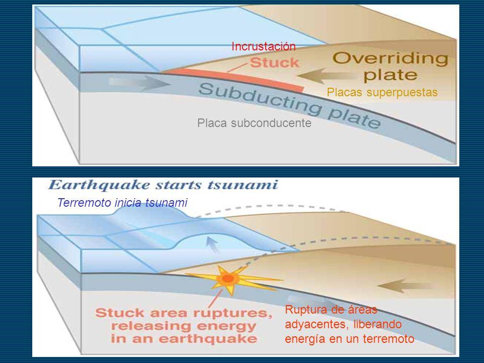 Terremoto inicia tsunami