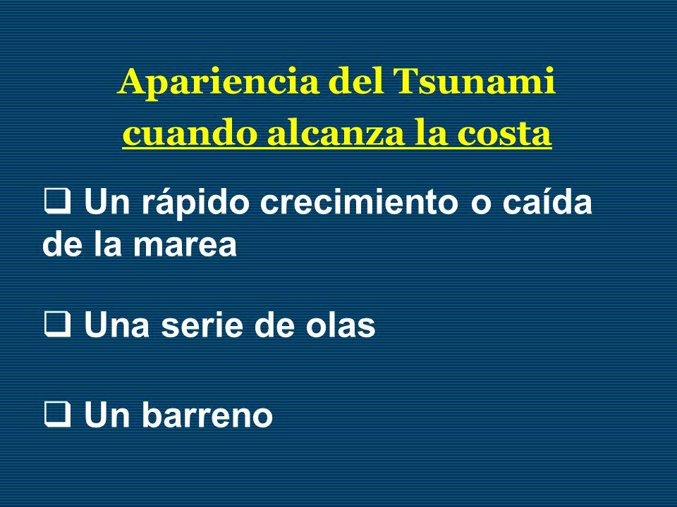 Apariencia del Tsunami cuando alcanza la costa