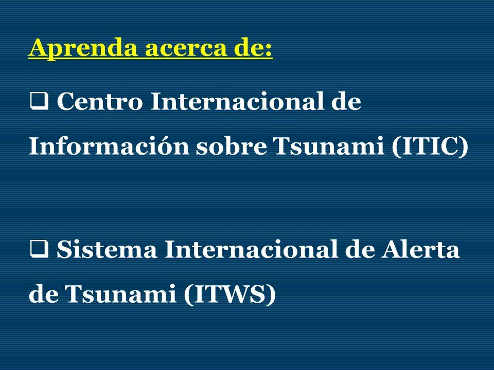 Centro Internacional de Información sobre Tsunami (ITIC)