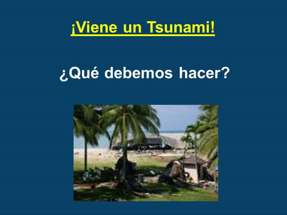 ¡Viene un Tsunami! ¿Qué debemos hacer