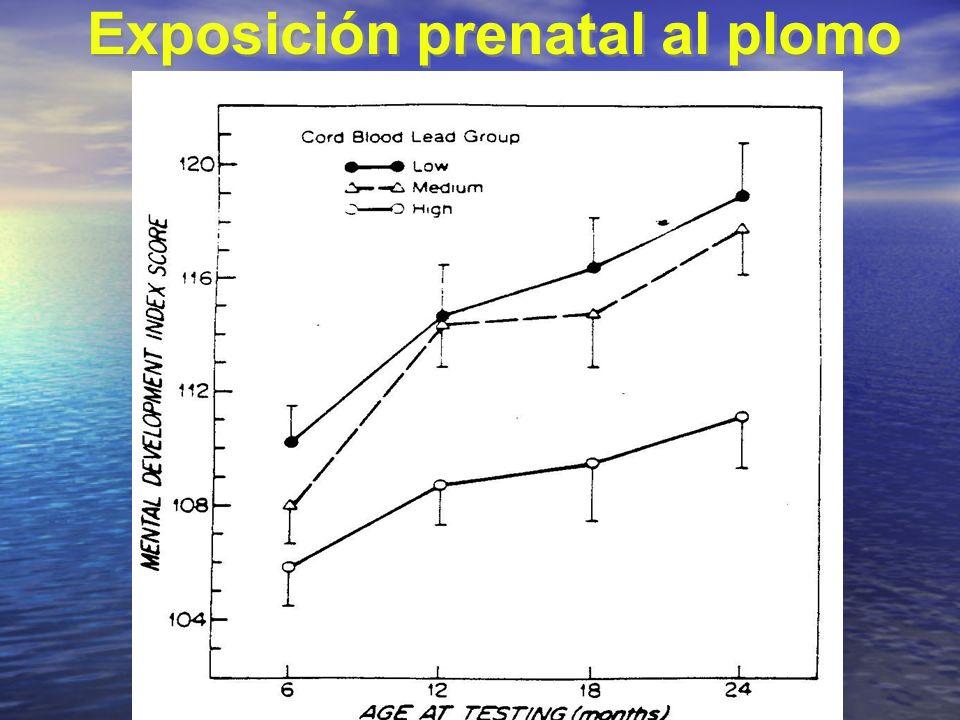 Exposición prenatal al plomo