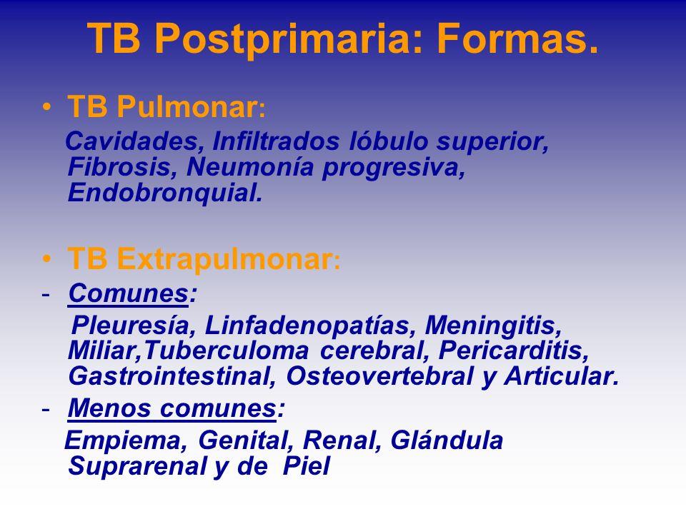 TB Postprimaria: Formas.
