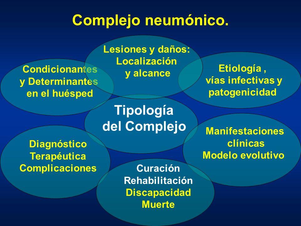 Complejo neumónico. Tipología del Complejo Lesiones y daños: