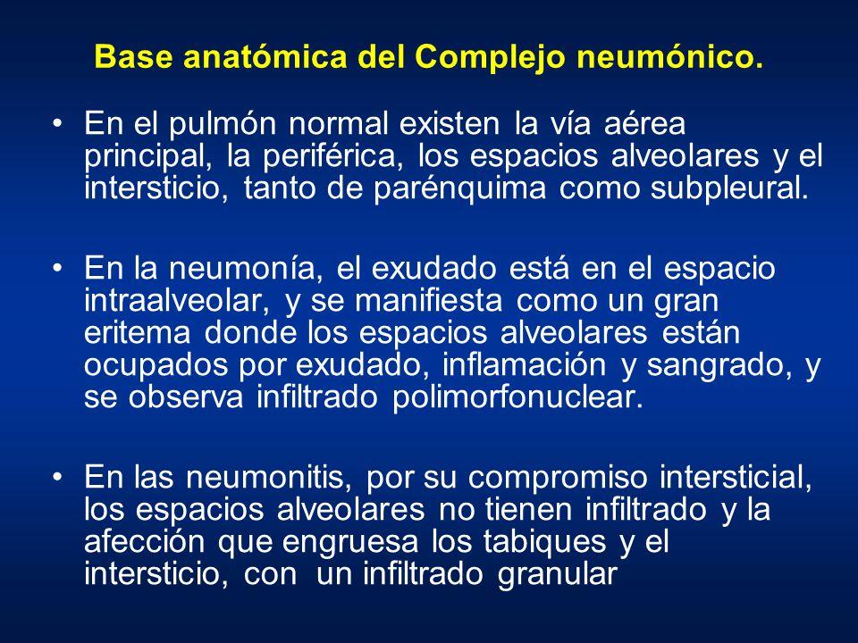 Base anatómica del Complejo neumónico.