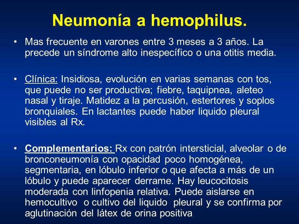 Neumonía a hemophilus. Mas frecuente en varones entre 3 meses a 3 años. La precede un síndrome alto inespecífico o una otitis media.