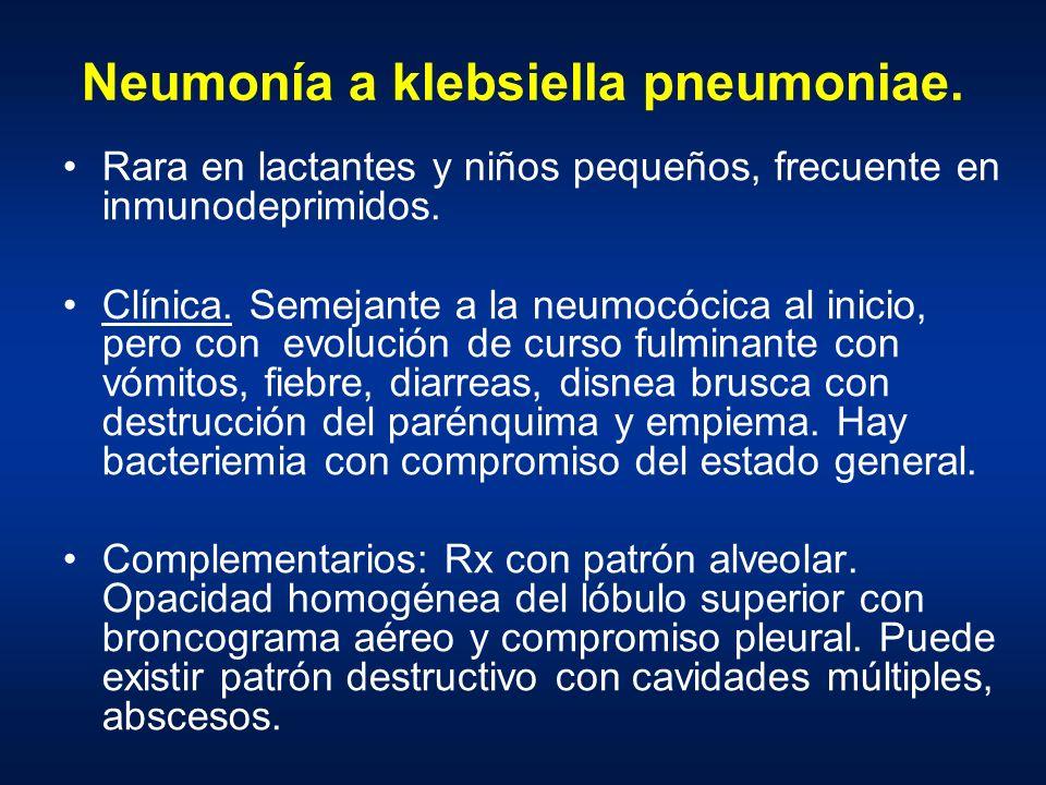 Neumonía a klebsiella pneumoniae.