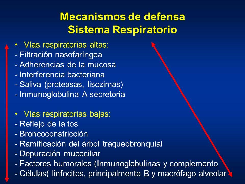 Mecanismos de defensa Sistema Respiratorio