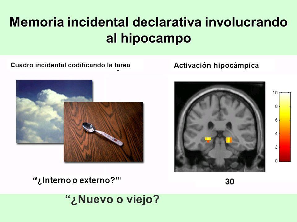 Memoria incidental declarativa involucrando al hipocampo