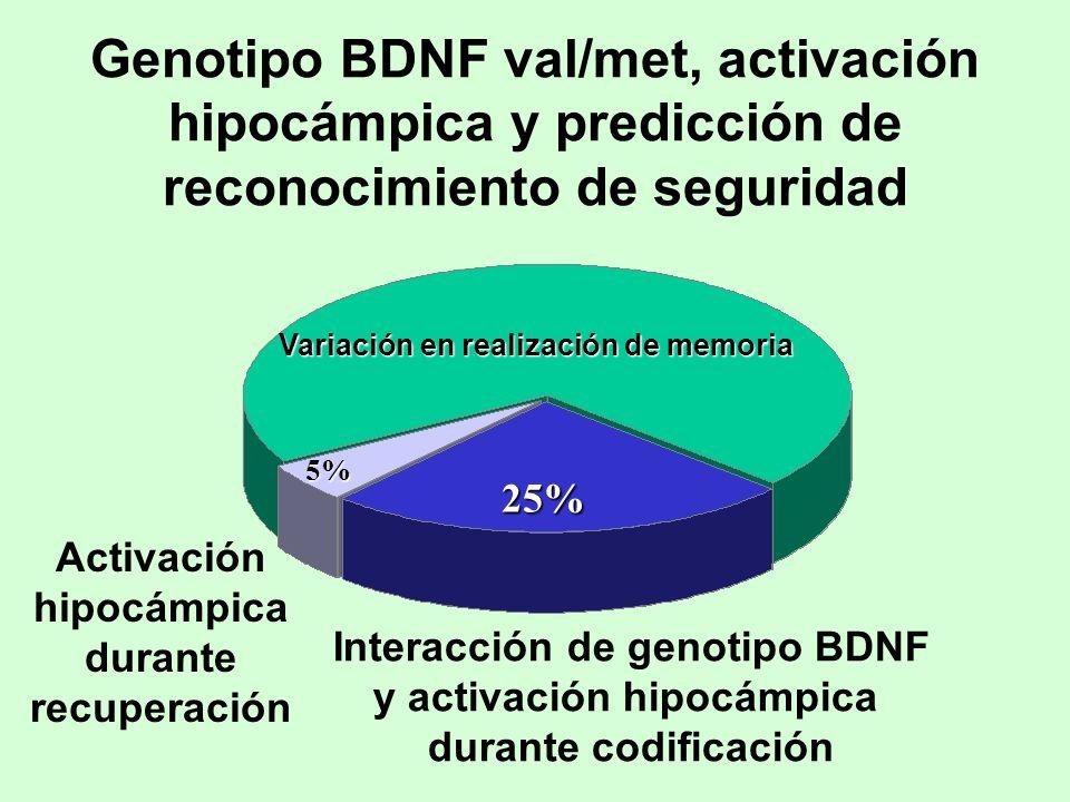 Genotipo BDNF val/met, activación hipocámpica y predicción de reconocimiento de seguridad