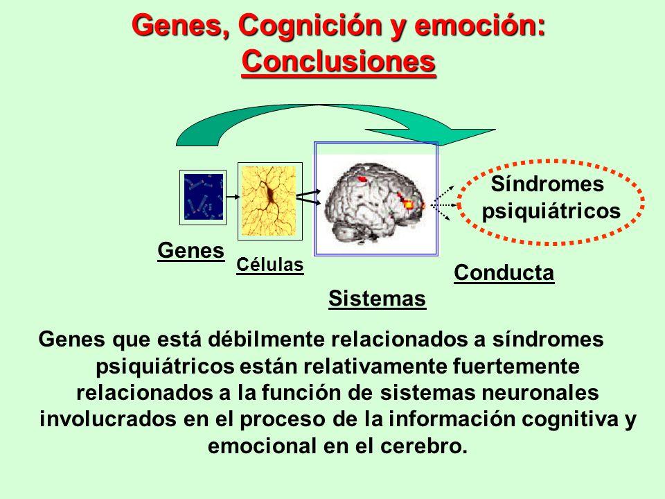 Genes, Cognición y emoción: Conclusiones
