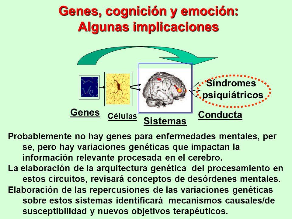 Genes, cognición y emoción: Algunas implicaciones