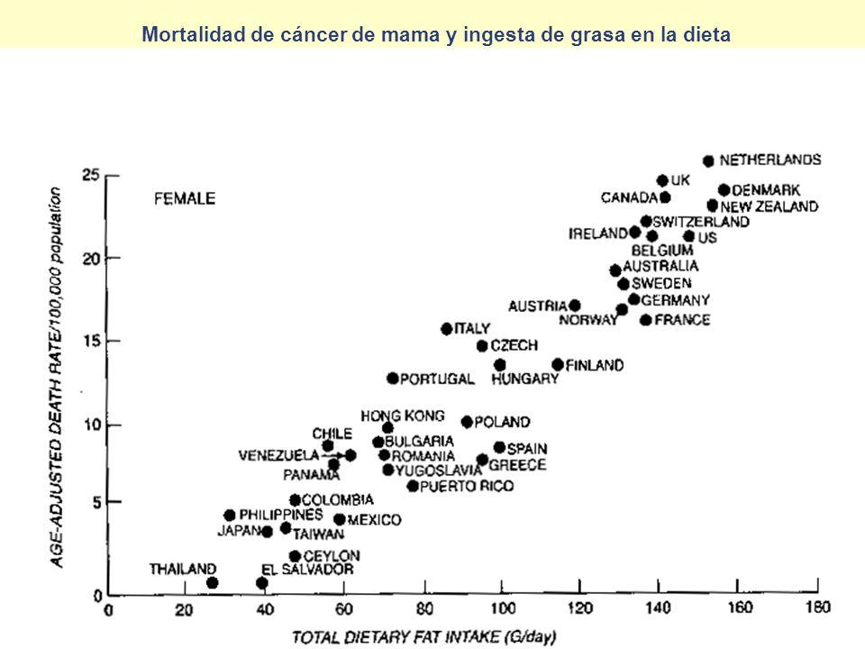 Mortalidad de cáncer de mama y ingesta de grasa en la dieta