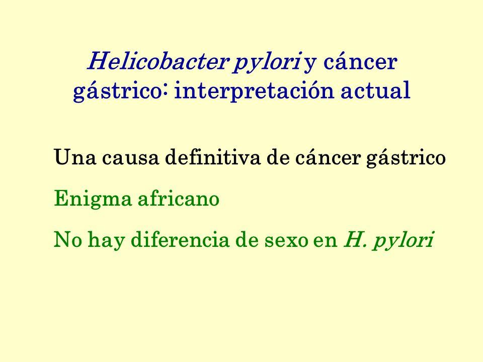Helicobacter pylori y cáncer gástrico: interpretación actual