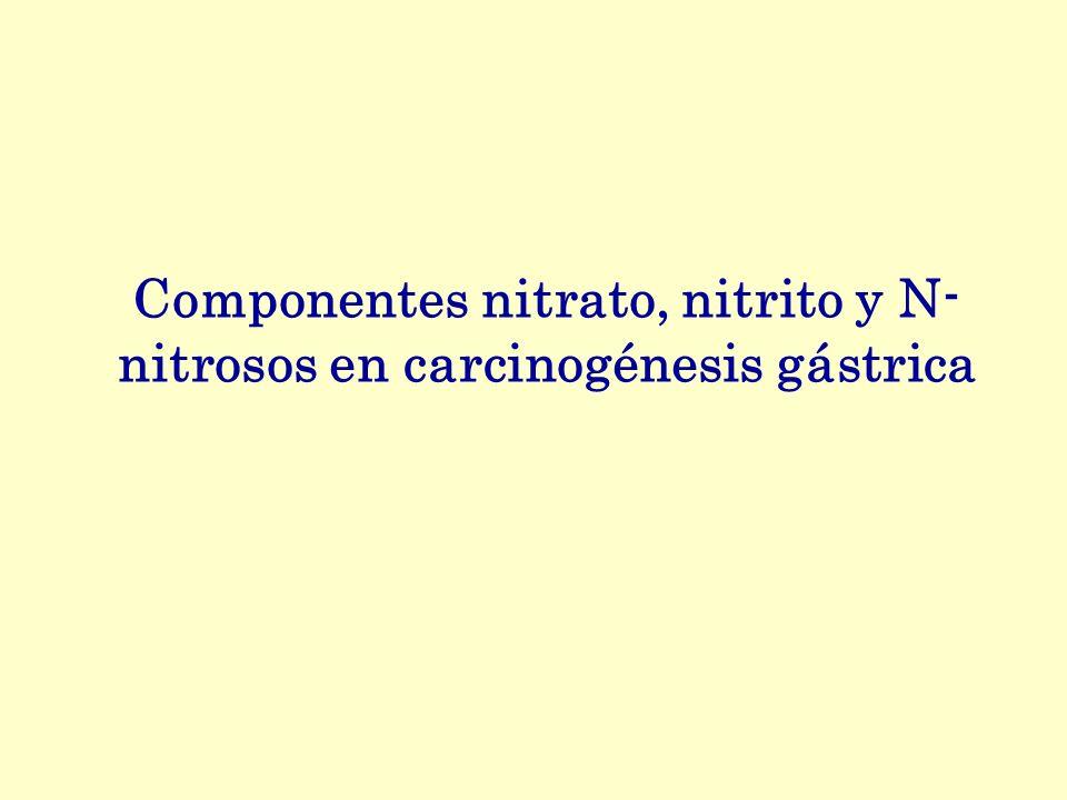 Componentes nitrato, nitrito y N-nitrosos en carcinogénesis gástrica