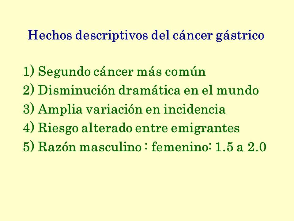 Hechos descriptivos del cáncer gástrico