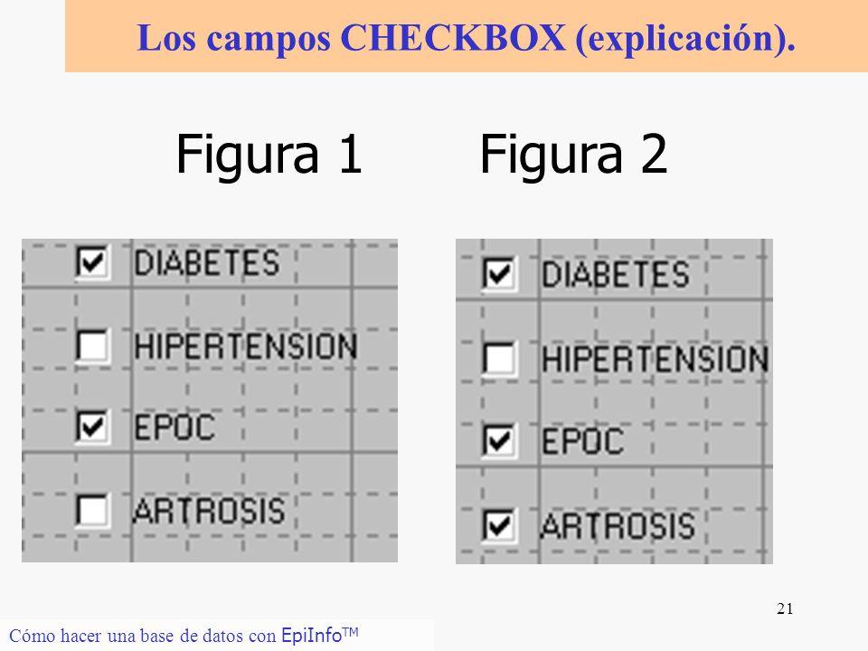 Los campos CHECKBOX (explicación).