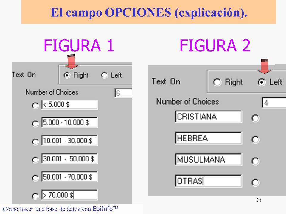 El campo OPCIONES (explicación).