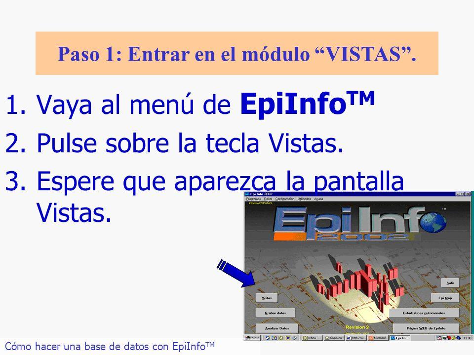 Paso 1: Entrar en el módulo VISTAS .