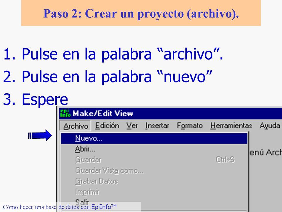 Paso 2: Crear un proyecto (archivo).