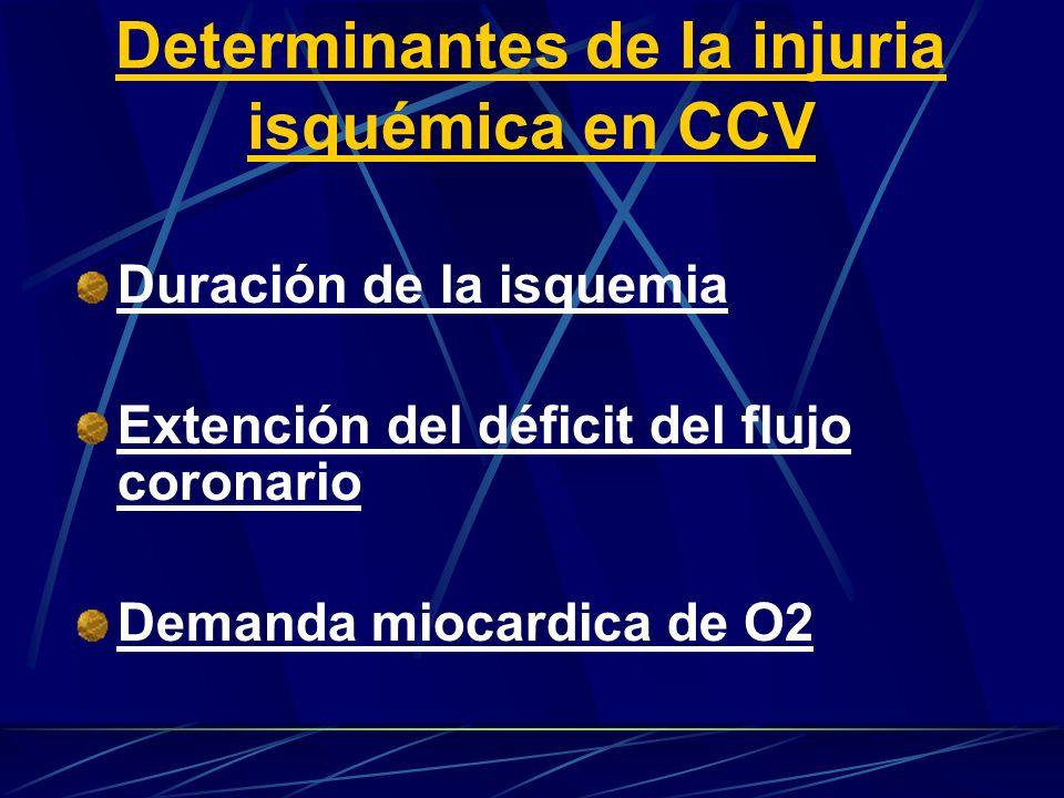 Determinantes de la injuria isquémica en CCV