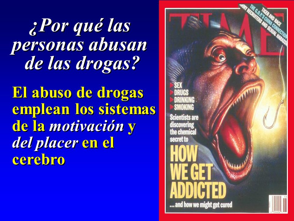 ¿Por qué las personas abusan de las drogas