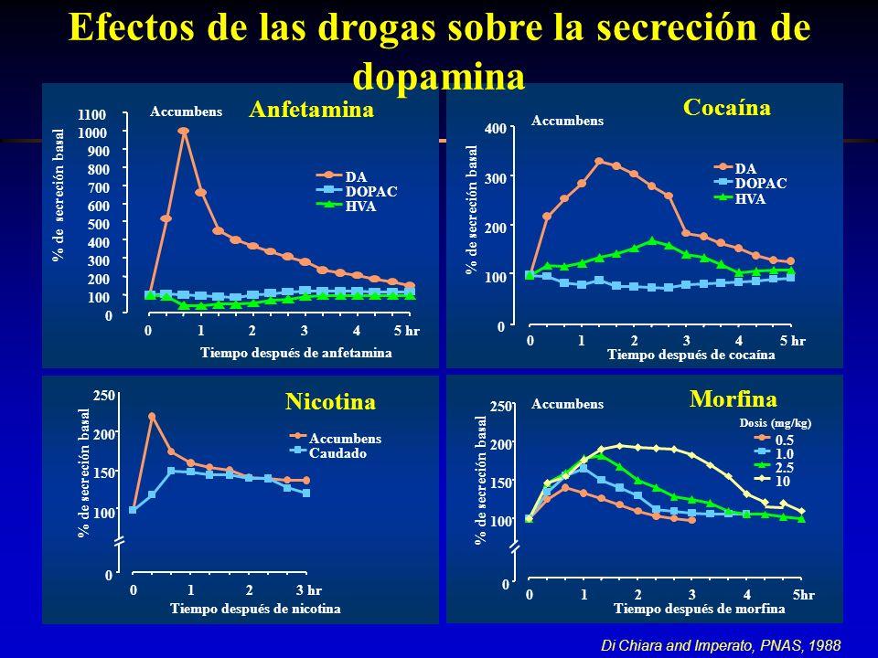 Efectos de las drogas sobre la secreción de dopamina