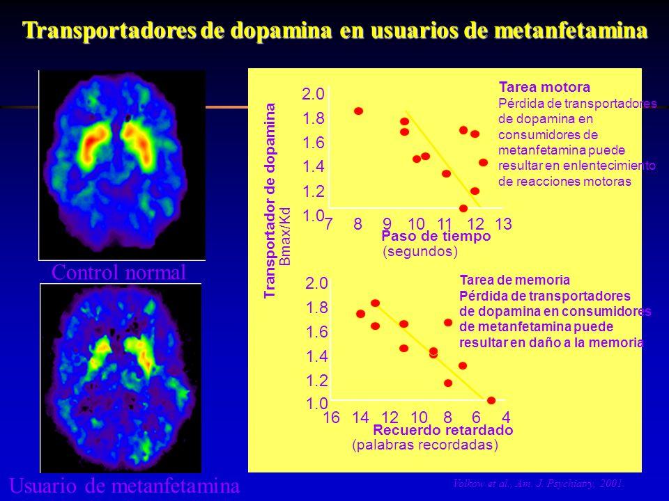 Transportadores de dopamina en usuarios de metanfetamina