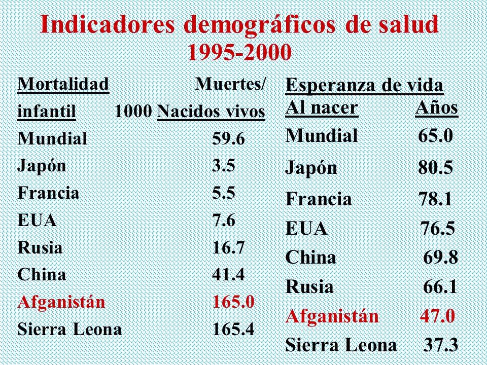 Indicadores demográficos de salud 1995-2000