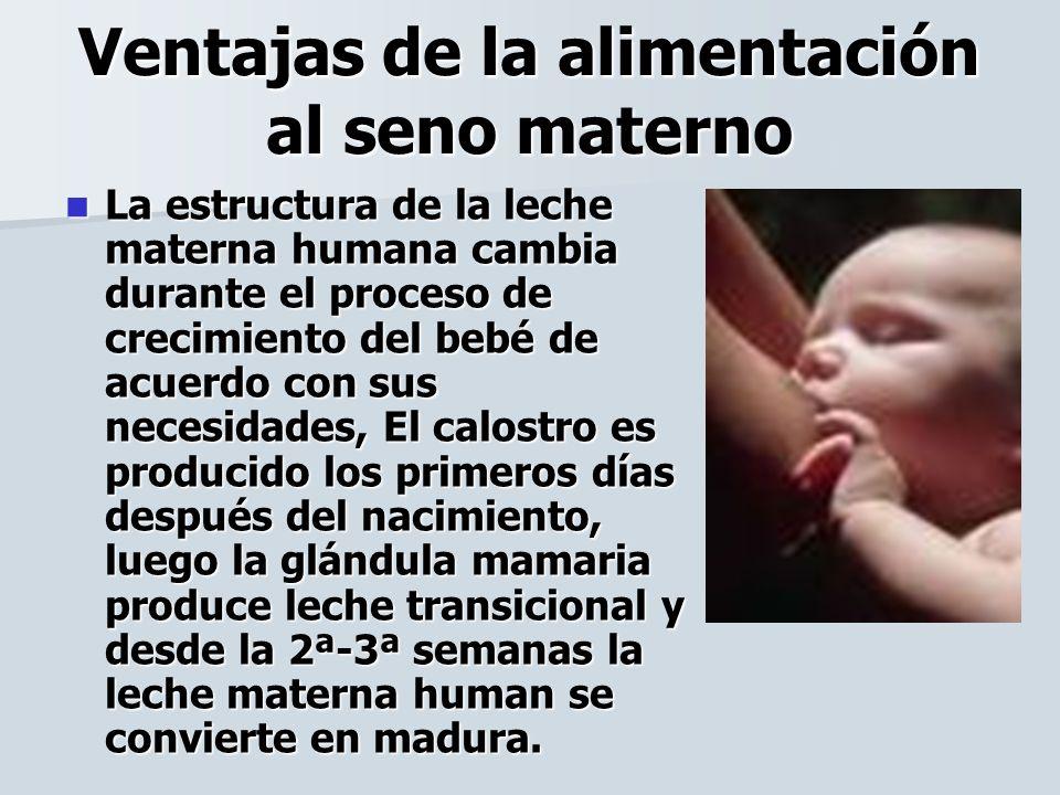 Ventajas de la alimentación al seno materno