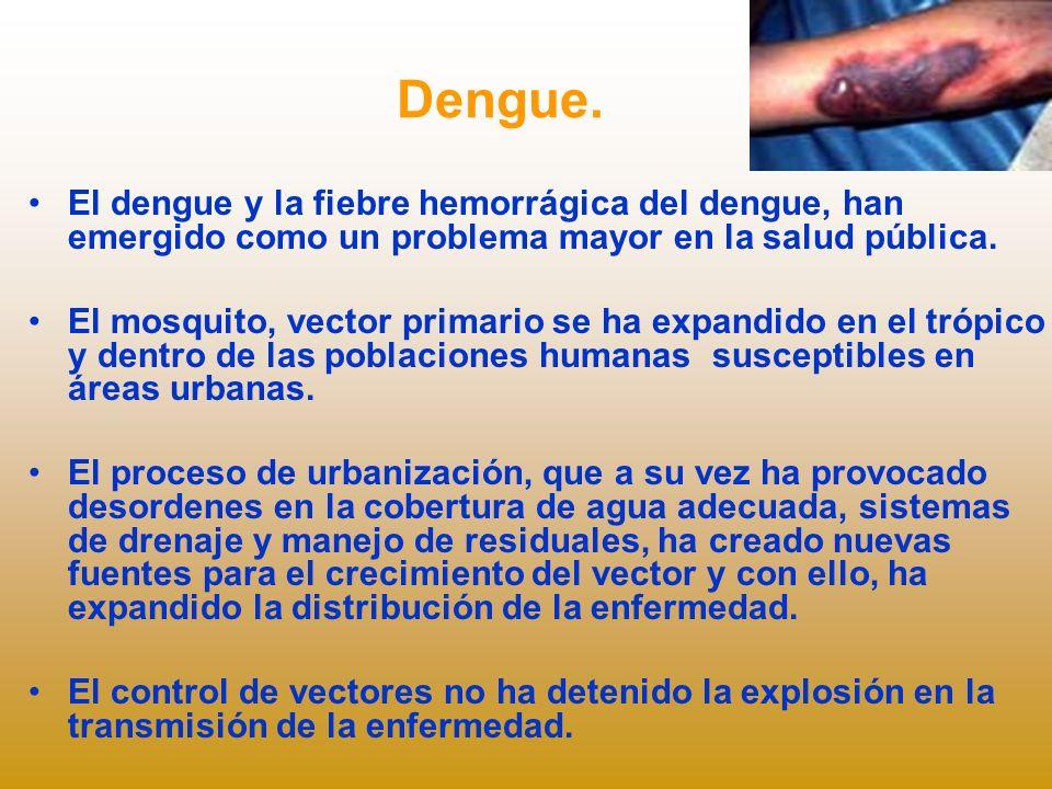 Dengue. El dengue y la fiebre hemorrágica del dengue, han emergido como un problema mayor en la salud pública.